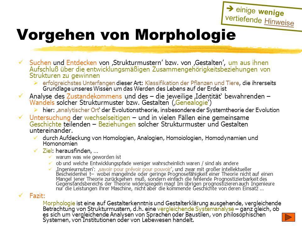 Vorgehen von Morphologie