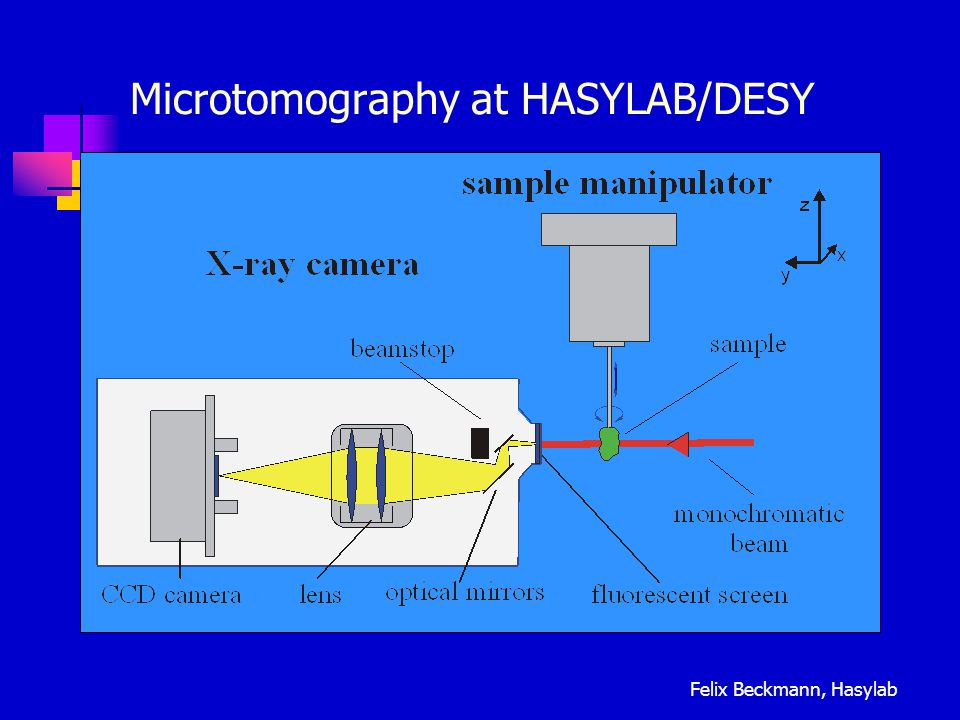 Microtomography at HASYLAB/DESY