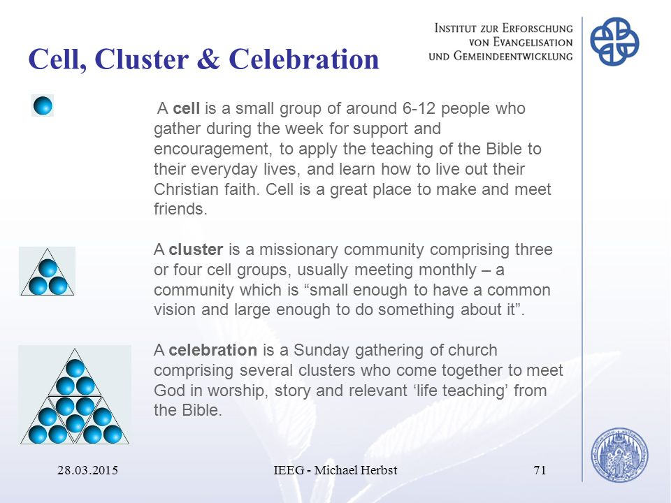 Cell, Cluster & Celebration