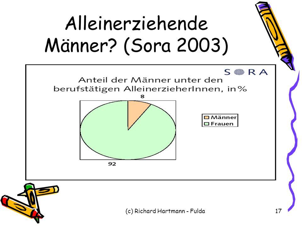 Alleinerziehende Männer (Sora 2003)
