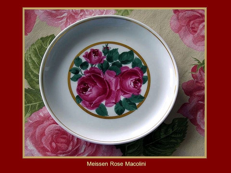 Meissen Majolica Meissen Rose Macolini