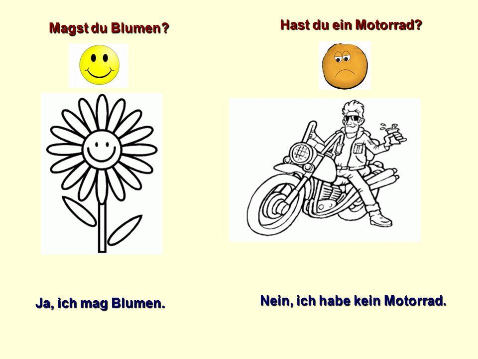 Hast du ein Motorrad Magst du Blumen Ja, ich mag Blumen. Nein, ich habe kein Motorrad.