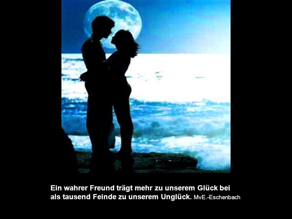 Ein wahrer Freund trägt mehr zu unserem Glück bei als tausend Feinde zu unserem Unglück.