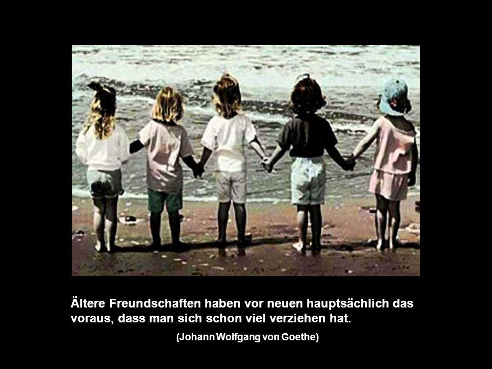 (Johann Wolfgang von Goethe)
