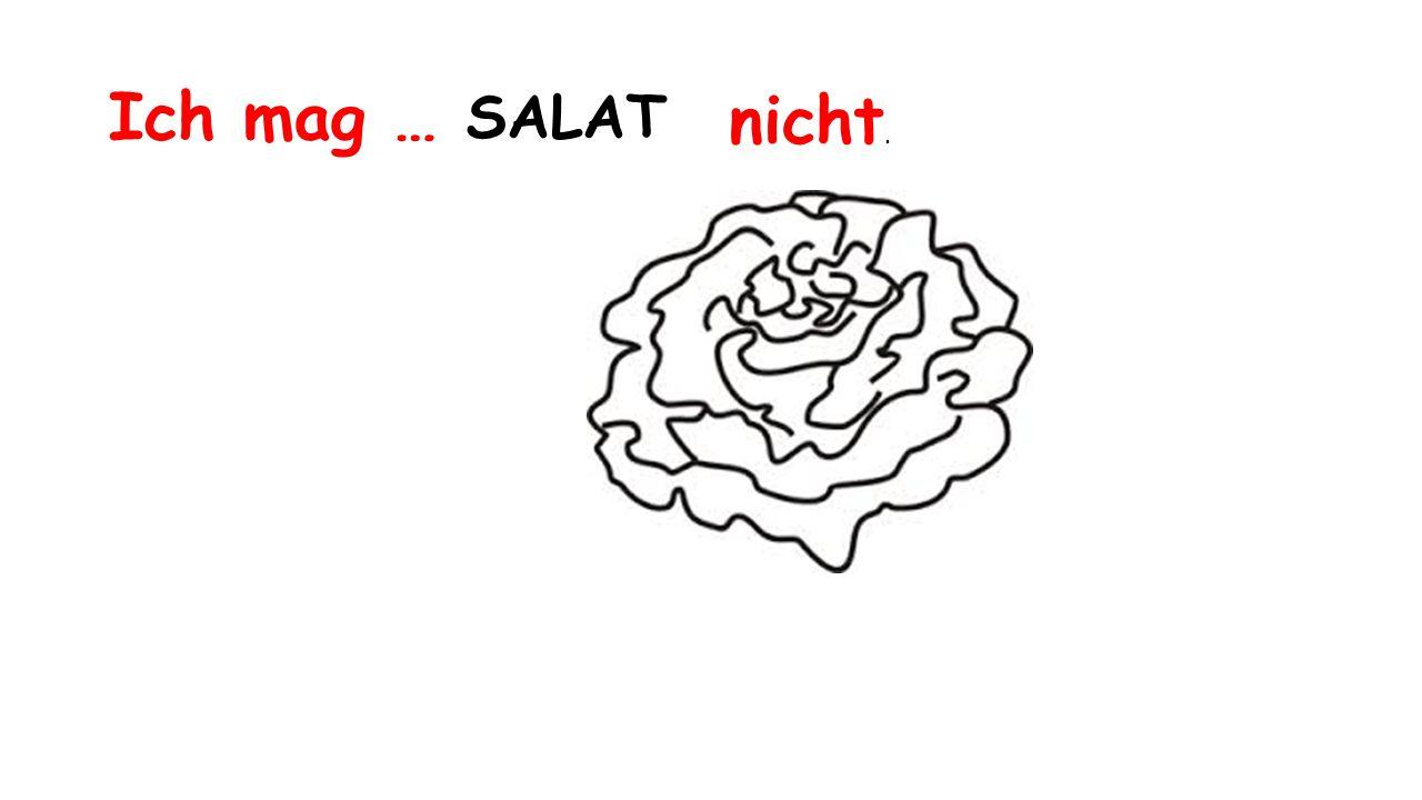 Ich mag … SALAT nicht.