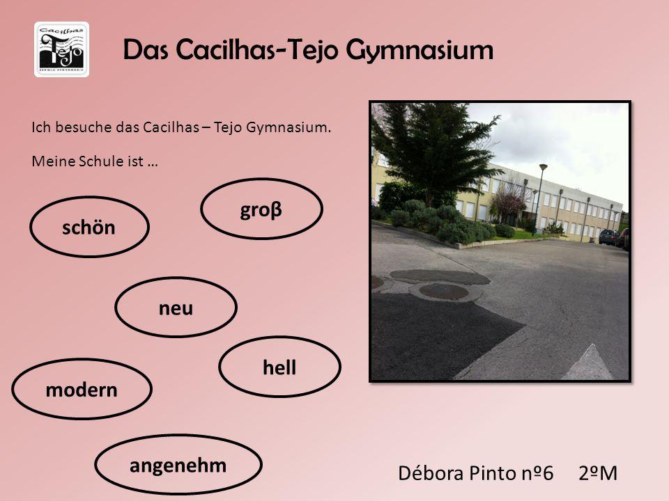 Das Cacilhas-Tejo Gymnasium