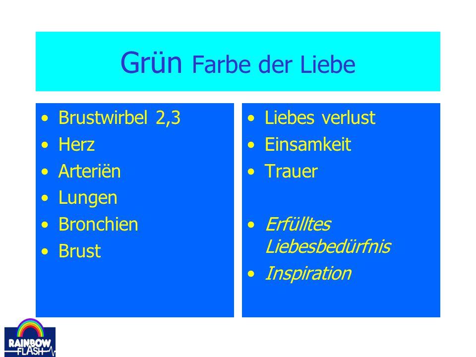 Grün Farbe der Liebe Brustwirbel 2,3 Herz Arteriën Lungen Bronchien