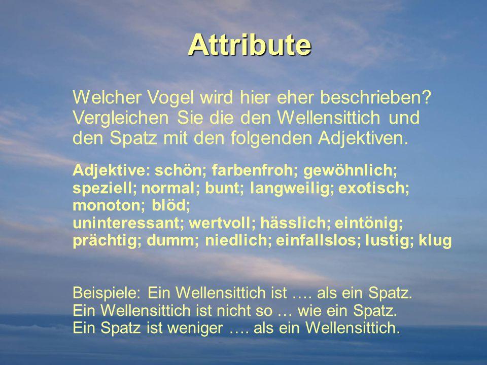 Attribute Welcher Vogel wird hier eher beschrieben Vergleichen Sie die den Wellensittich und den Spatz mit den folgenden Adjektiven.