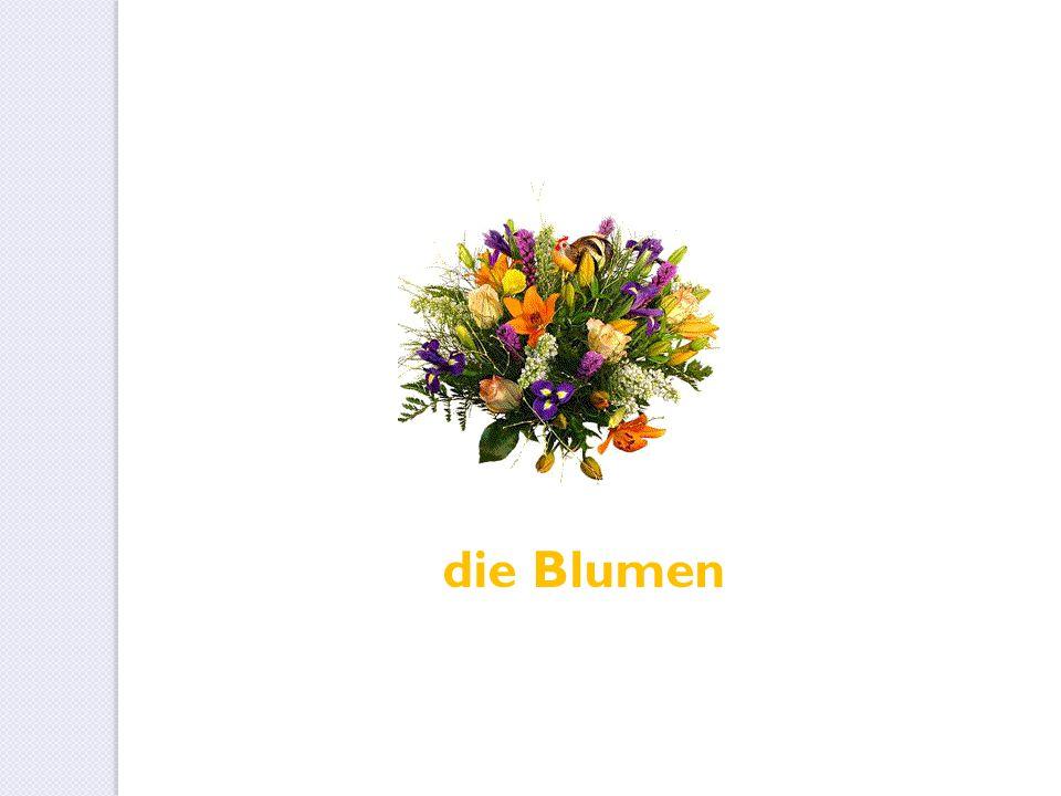 die Blumen