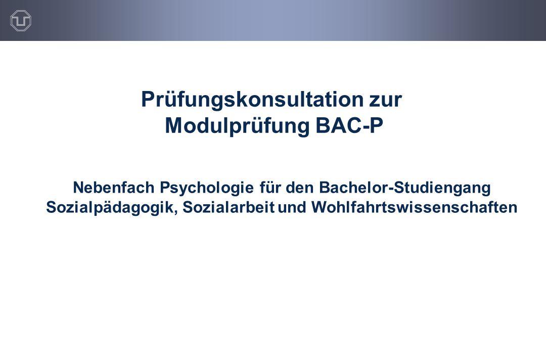 Prüfungskonsultation zur Modulprüfung BAC-P
