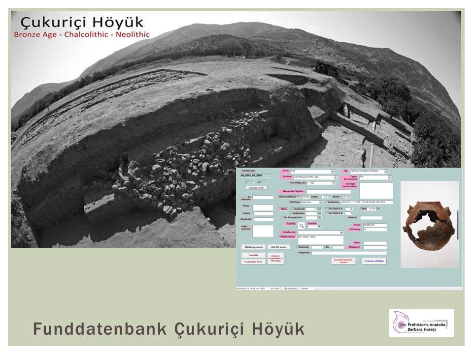 Funddatenbank Çukuriçi Höyük