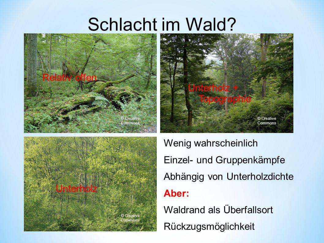 Schlacht im Wald Relativ offen Unterholz + Topographie