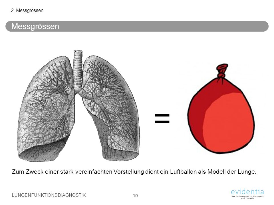 2. Messgrössen Messgrössen. = Zum Zweck einer stark vereinfachten Vorstellung dient ein Luftballon als Modell der Lunge.