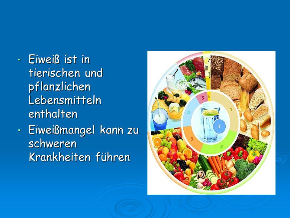 Eiweiß ist in tierischen und pflanzlichen Lebensmitteln enthalten