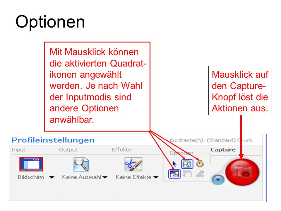 Optionen Mit Mausklick können die aktivierten Quadrat- ikonen angewählt werden. Je nach Wahl der Inputmodis sind andere Optionen anwählbar.