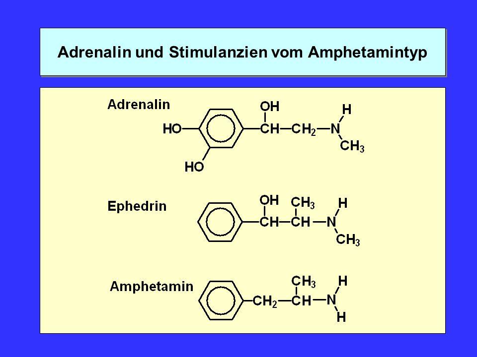 Adrenalin und Stimulanzien vom Amphetamintyp