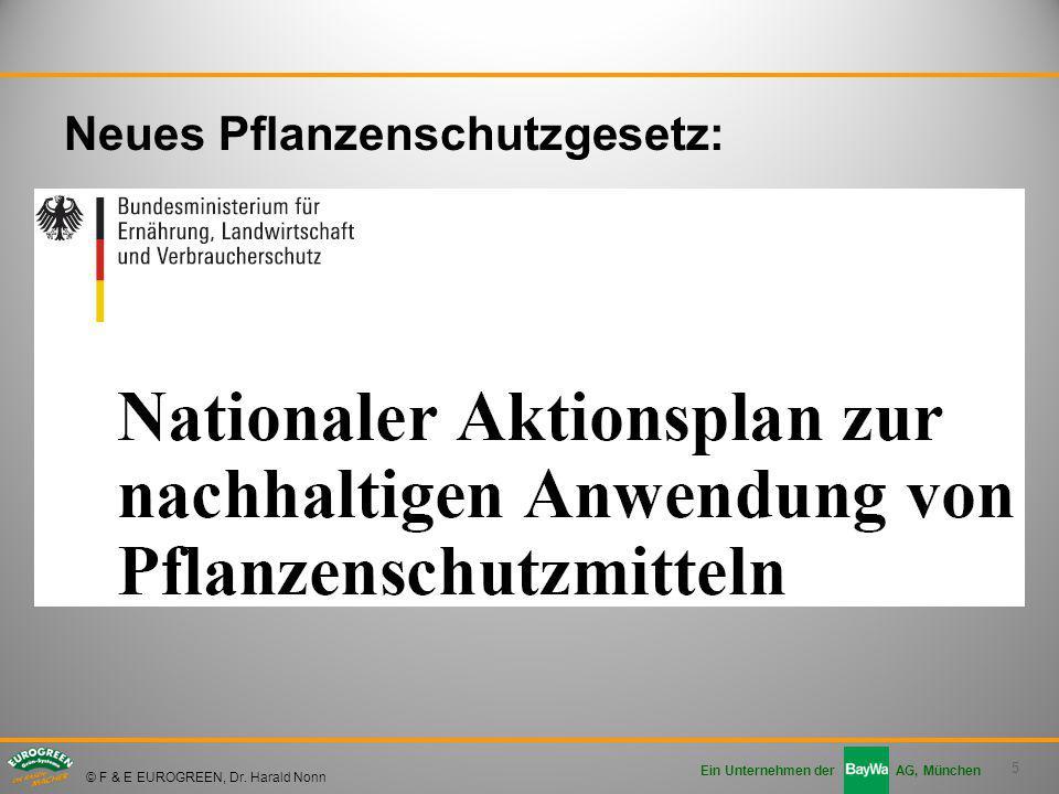 Ausgezeichnet Professionelle Aktionsplan Vorlage Galerie ...