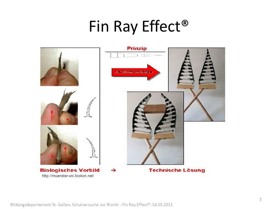 Fin Ray Effect® http://muenster-uni.biokon.net/ Bildungsdepartement St.