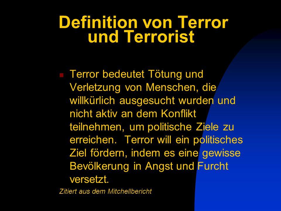 Definition von Terror und Terrorist