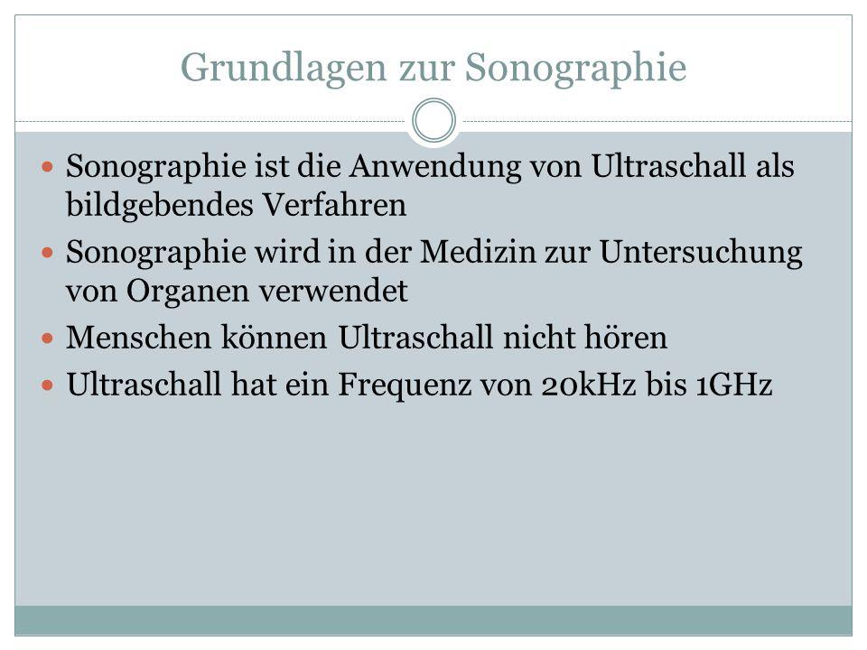 Grundlagen zur Sonographie