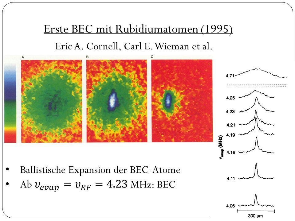 Erste BEC mit Rubidiumatomen (1995)