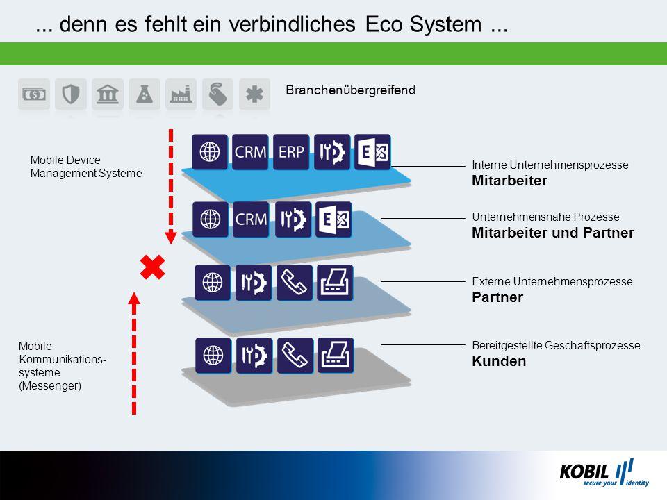 ... denn es fehlt ein verbindliches Eco System ...