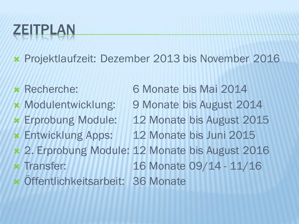 Zeitplan Projektlaufzeit: Dezember 2013 bis November 2016