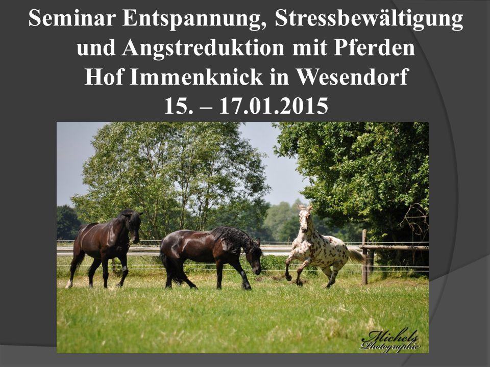 Seminar Entspannung, Stressbewältigung und Angstreduktion mit Pferden Hof Immenknick in Wesendorf 15.