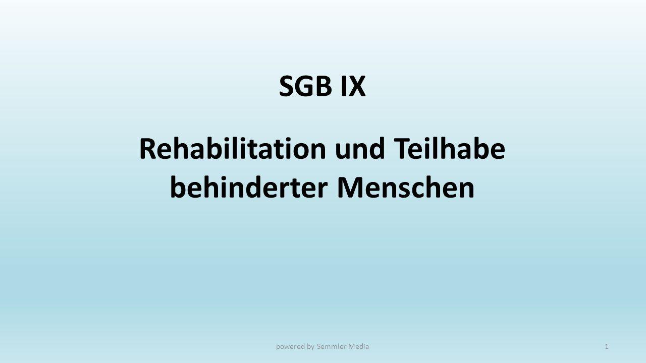 SGB IX Rehabilitation und Teilhabe behinderter Menschen