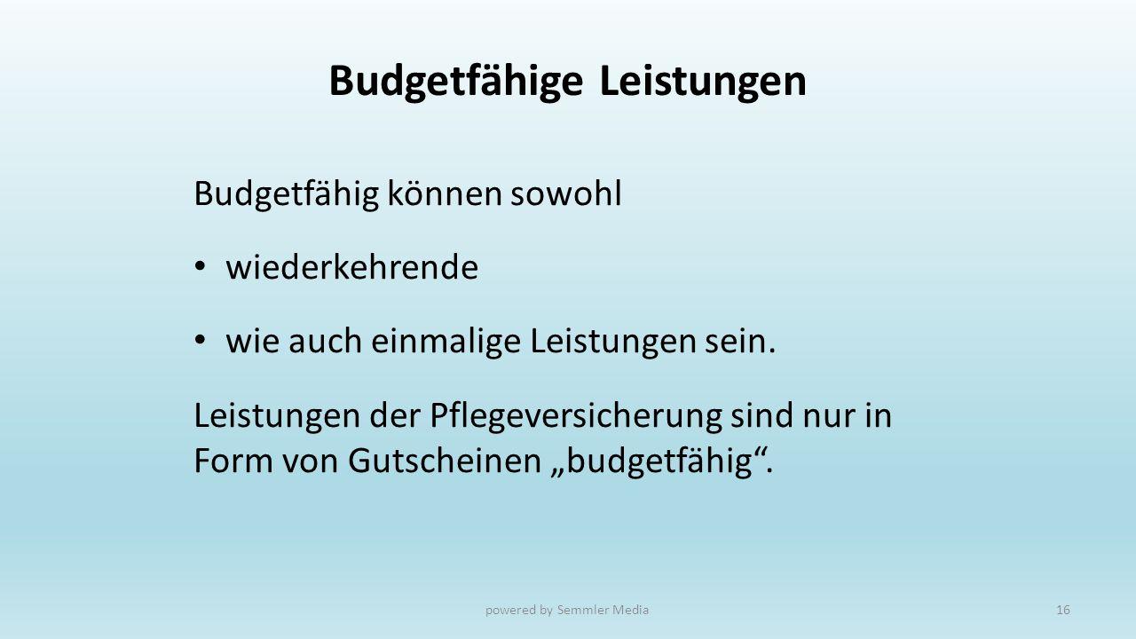 Budgetfähige Leistungen