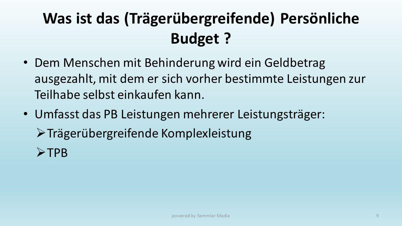 Was ist das (Trägerübergreifende) Persönliche Budget