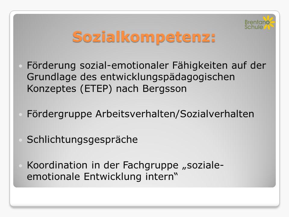 Sozialkompetenz: Förderung sozial-emotionaler Fähigkeiten auf der Grundlage des entwicklungspädagogischen Konzeptes (ETEP) nach Bergsson.