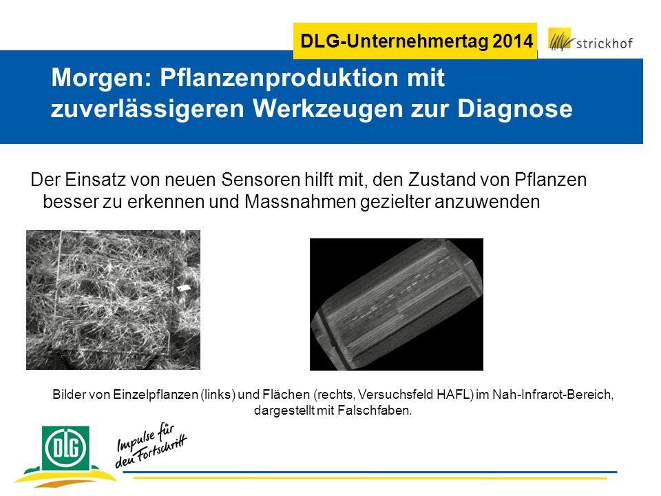 Morgen: Pflanzenproduktion mit zuverlässigeren Werkzeugen zur Diagnose