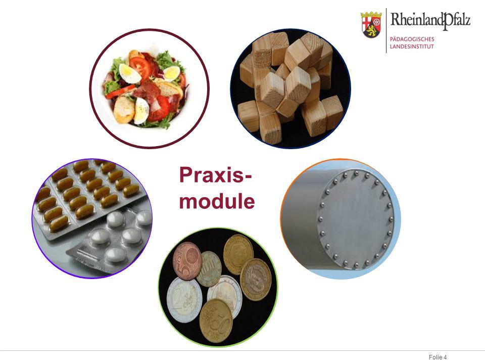 Praxis-module