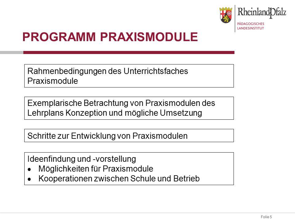 Programm Praxismodule