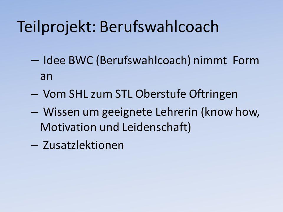Teilprojekt: Berufswahlcoach