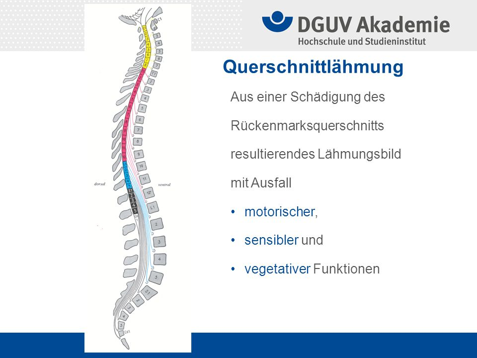Querschnittlähmung Aus einer Schädigung des Rückenmarksquerschnitts