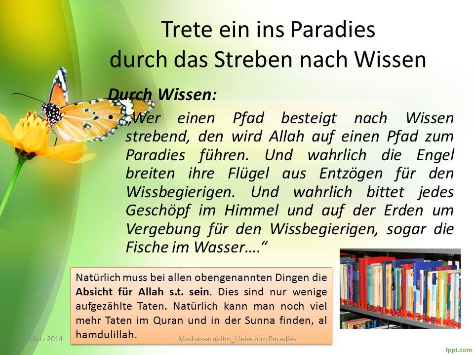 Trete ein ins Paradies durch das Streben nach Wissen