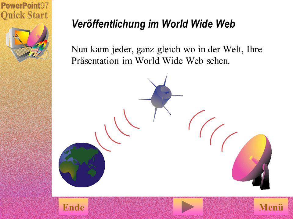 Veröffentlichung im World Wide Web
