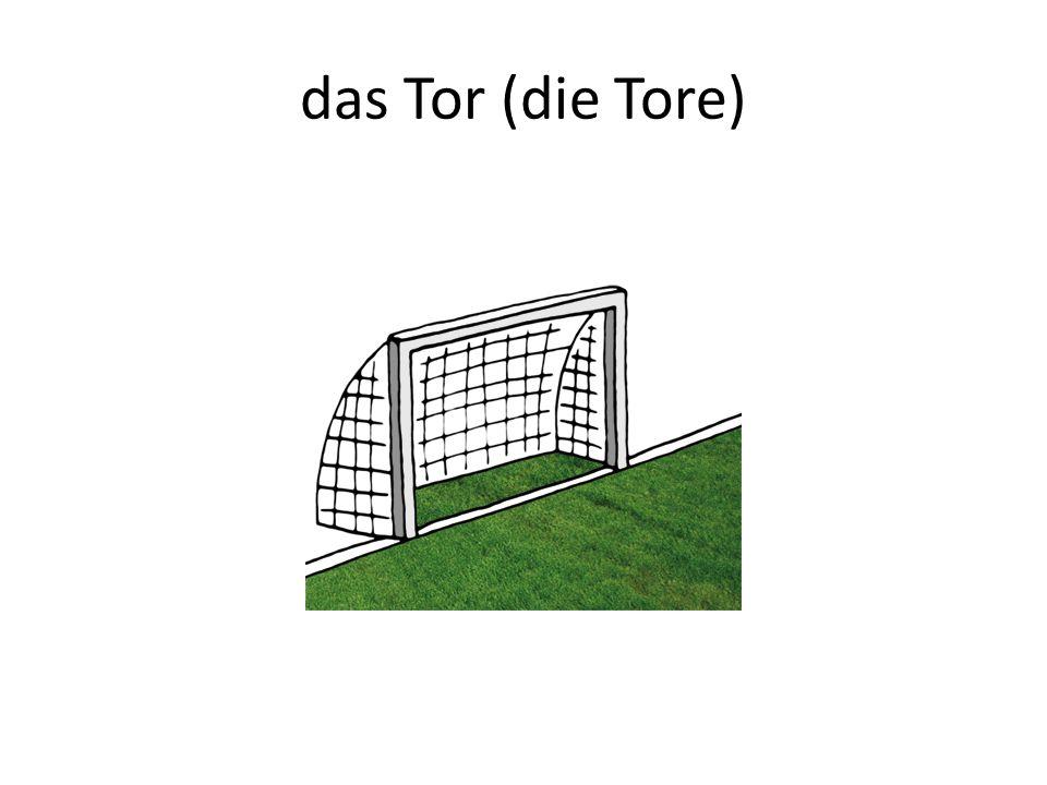 das Tor (die Tore)