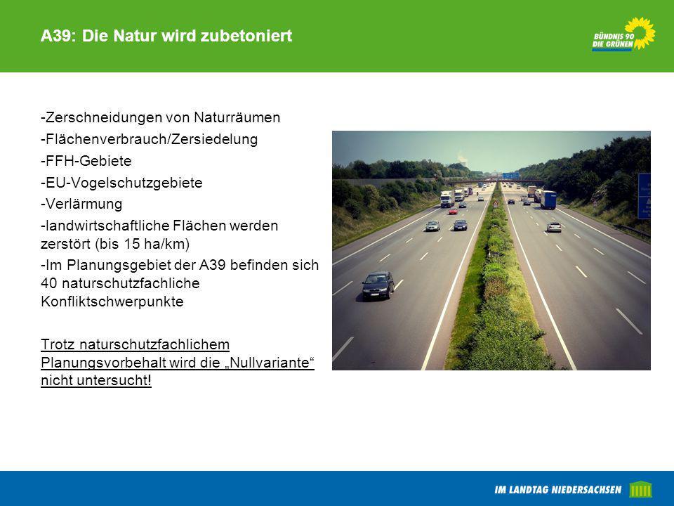 A39: Die Natur wird zubetoniert