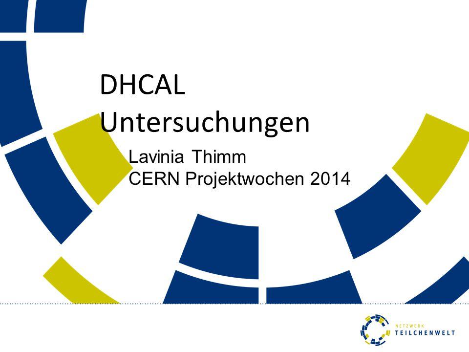 Lavinia Thimm CERN Projektwochen 2014