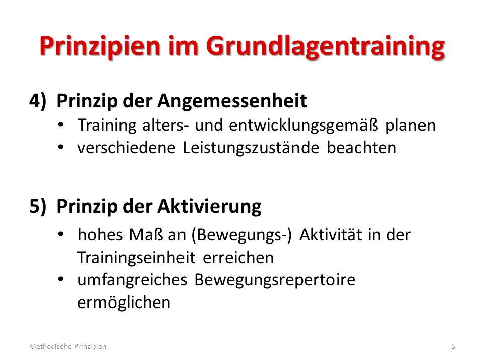 Prinzipien im Grundlagentraining