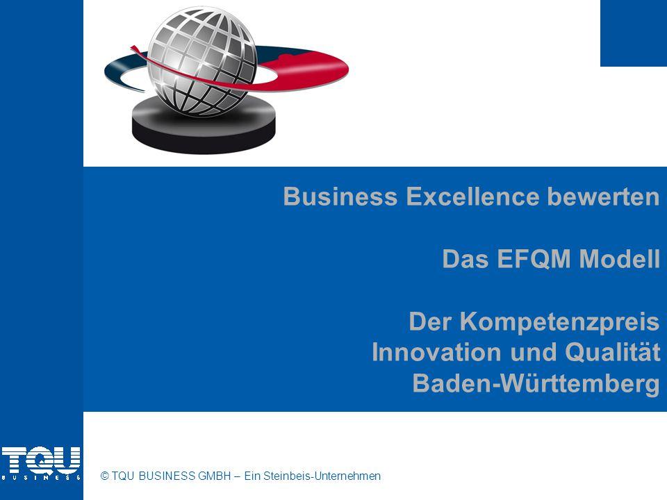 Business Excellence bewerten Das EFQM Modell Der Kompetenzpreis Innovation und Qualität Baden-Württemberg