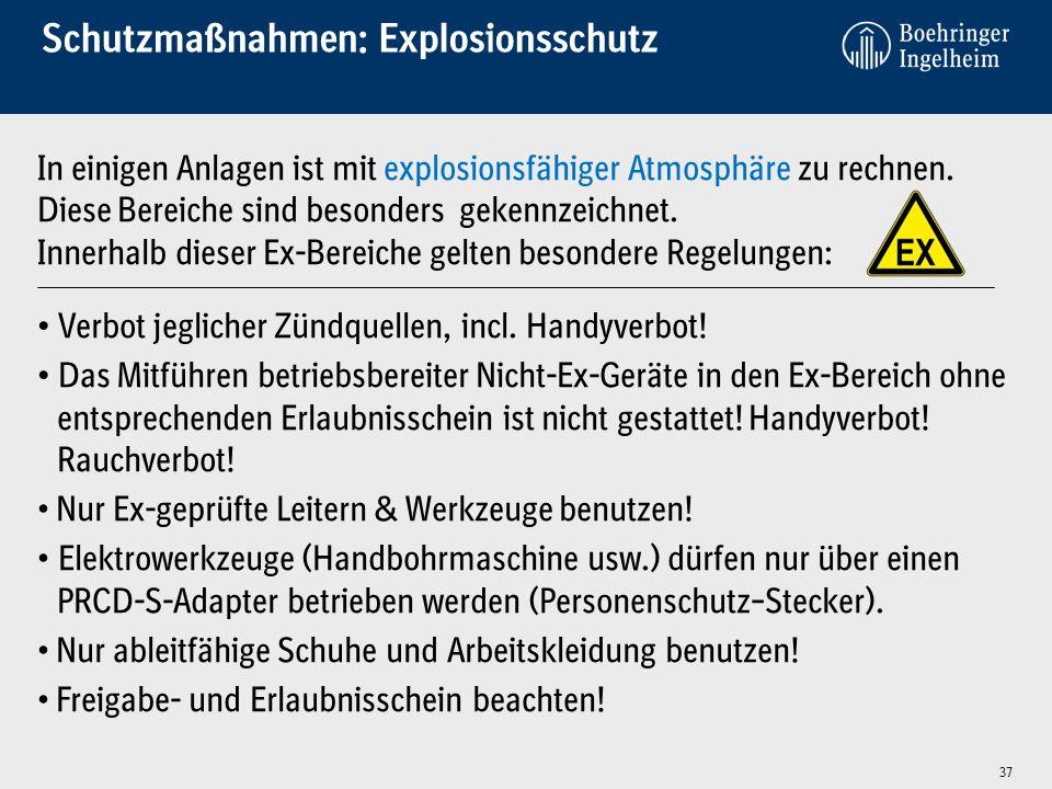 Schutzmaßnahmen: Explosionsschutz