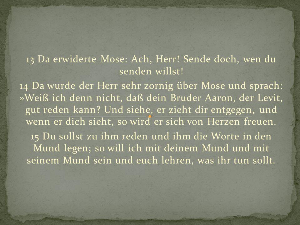 13 Da erwiderte Mose: Ach, Herr! Sende doch, wen du senden willst!