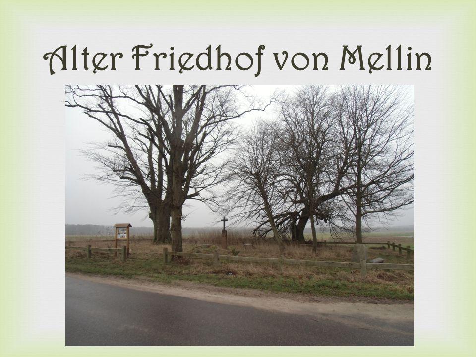 Alter Friedhof von Mellin