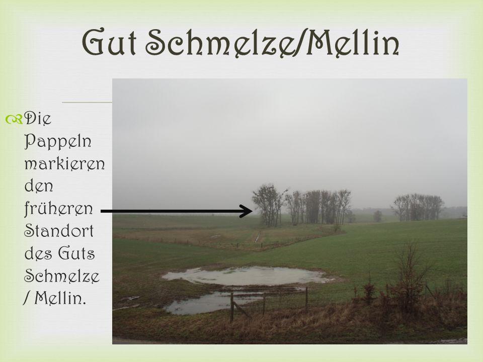 Gut Schmelze/Mellin Die Pappeln markieren den früheren Standort des Guts Schmelze / Mellin.