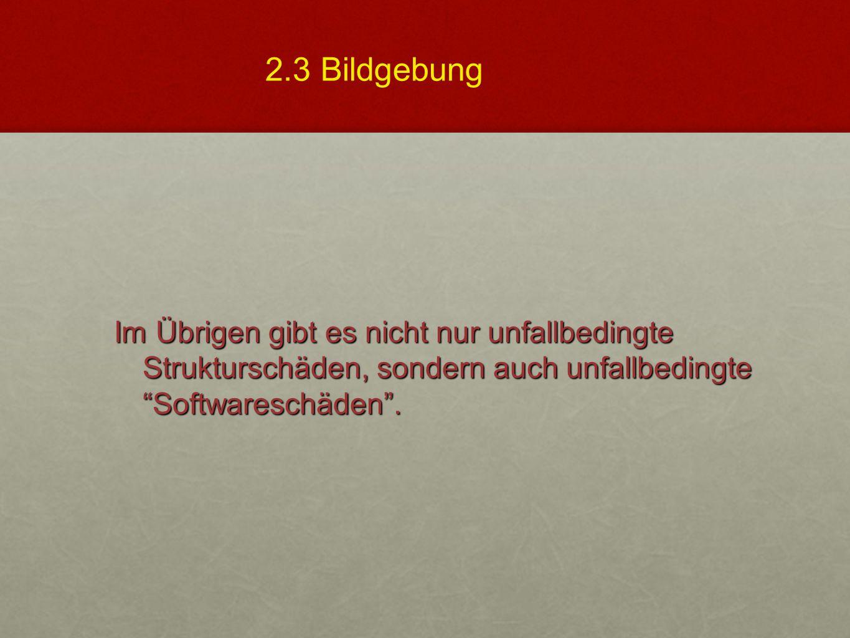 2.3 Bildgebung Im Übrigen gibt es nicht nur unfallbedingte Strukturschäden, sondern auch unfallbedingte Softwareschäden .