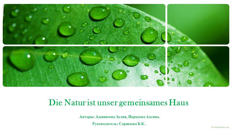 Die Natur ist unser gemeinsames Haus